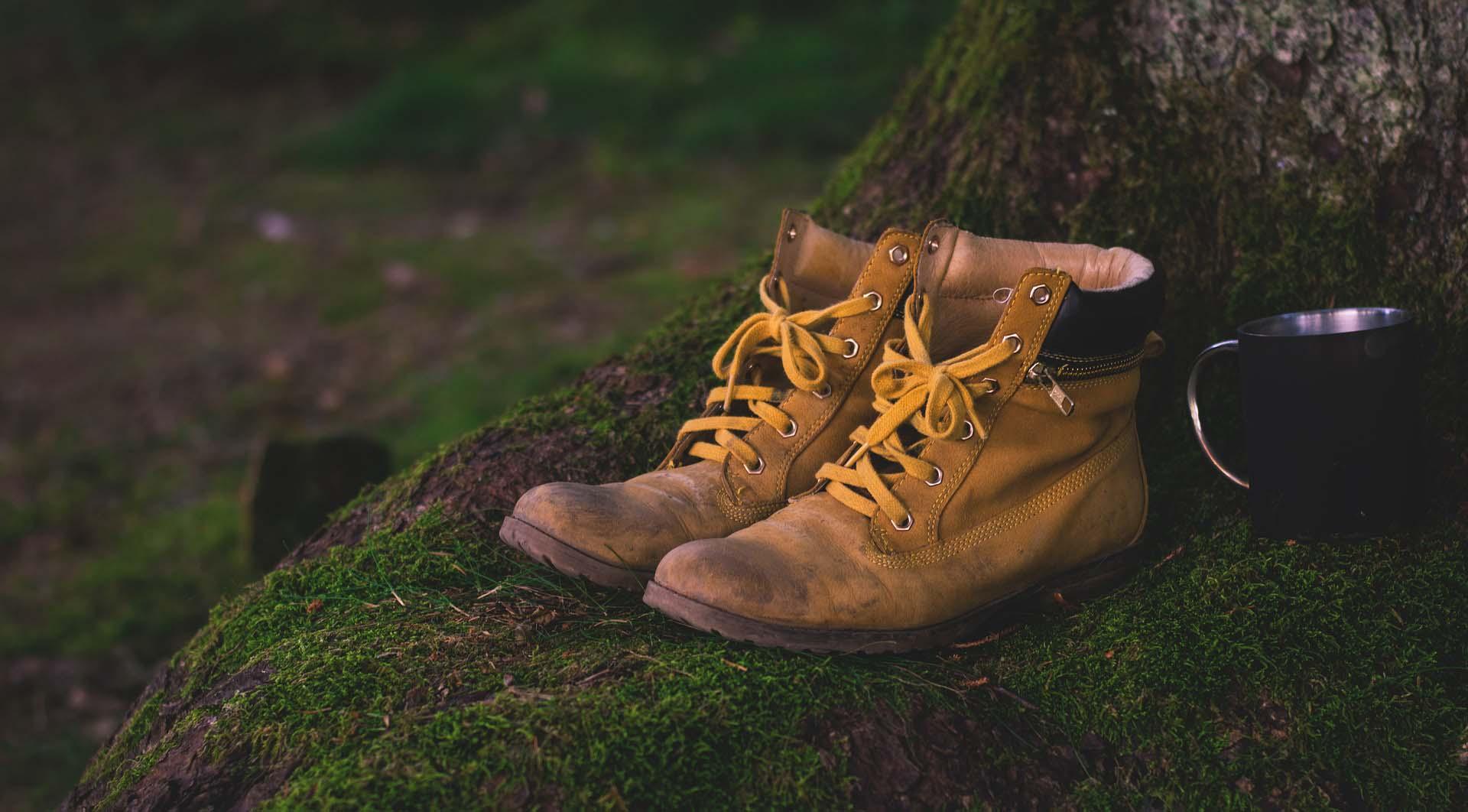 Trekking and nature