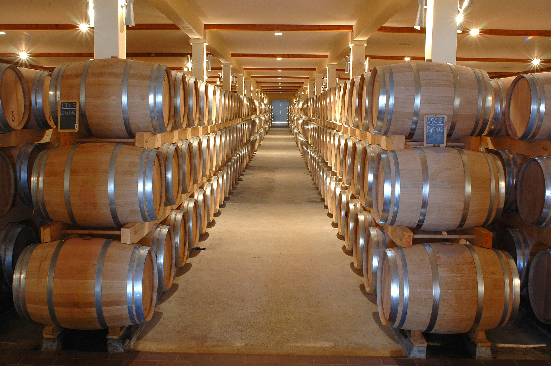 Visita a bodega con cata de vino