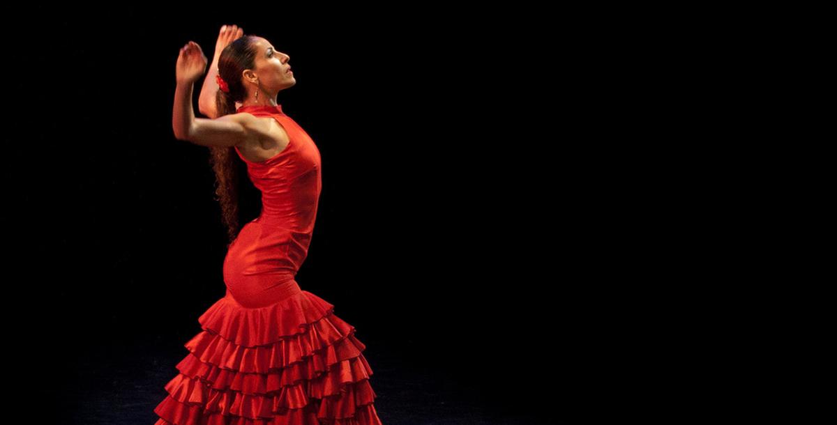 Experiência flamenca