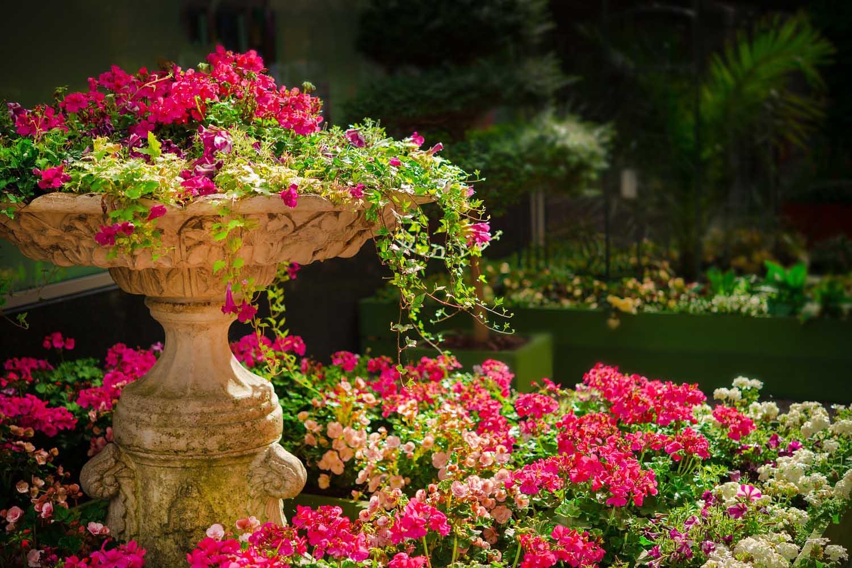 Botanic Garden Carlos Thays