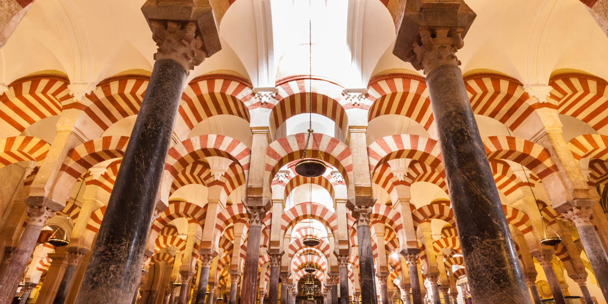Discover the mosque