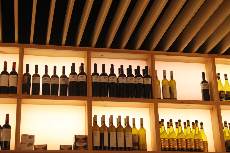 Lux Santiago  galeria