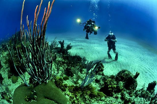 Double diving in Berlengas Islands