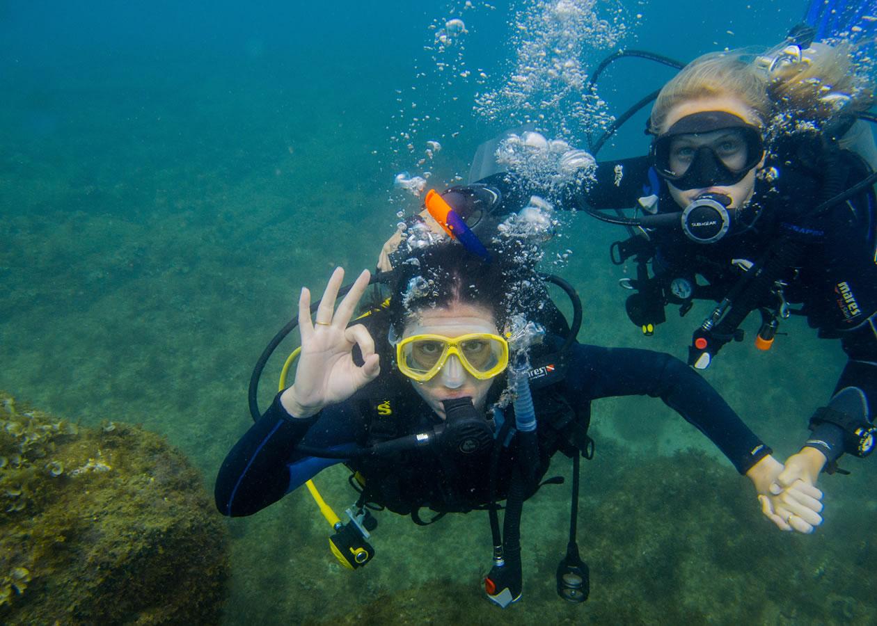 Diving in Berlengas Islands