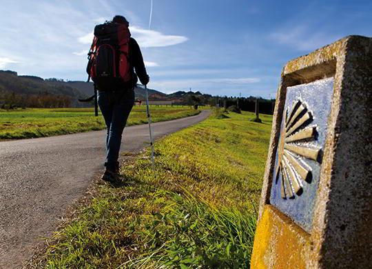 Camino de Santiago: Camino inglés (Incluye taxi Pontedeume-hotel-Pontedeume)